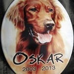 Fotoschild mit Hundemotiv